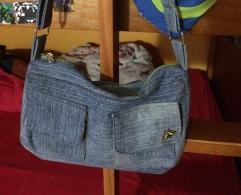 Unos jeans, en una cartera.