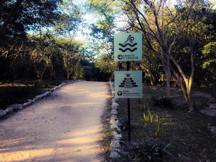 Camino cenote-ruinas