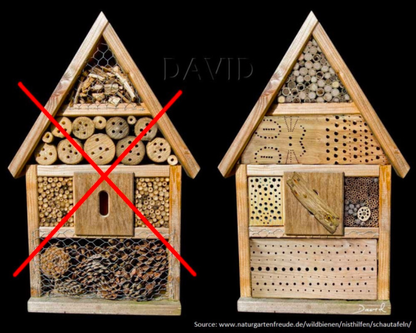 dos and don'ts insect hotels.png