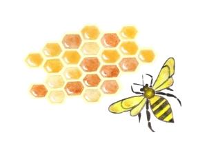 hex†gonos de miel y abeja final