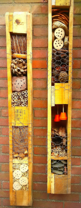 little bug hotel 5