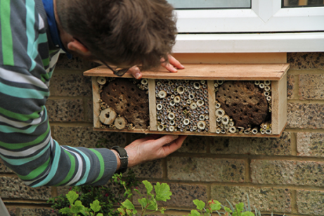 little bug hotel 6