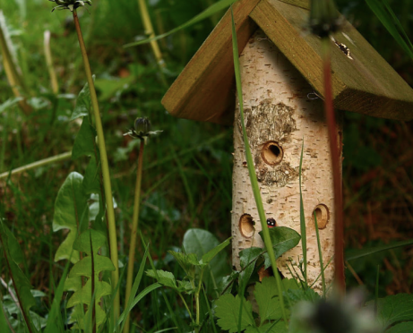 little bug hotel 7